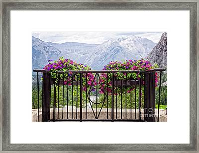 Colorful Flowers On The Wrought Iron Fence Framed Print by Lucinda Walter