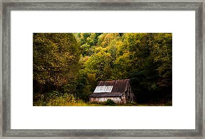 Colorful Foliage Framed Print by Shelby Young