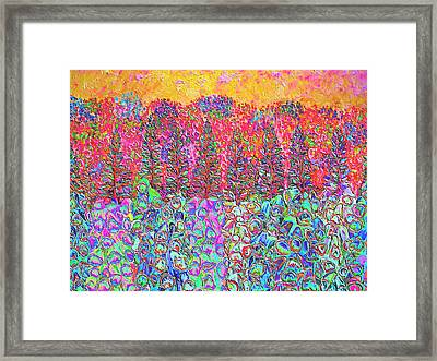 Colorful Garden Framed Print by Elizabeth Lock