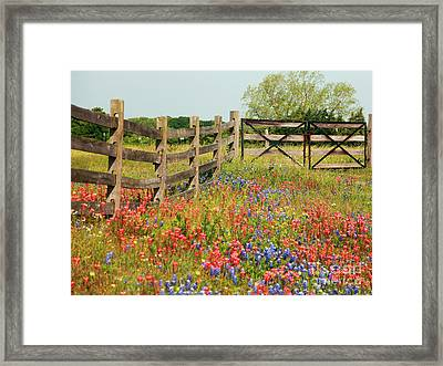 Colorful Gate Framed Print