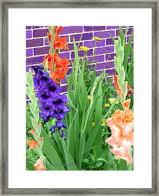 Framed Print featuring the pyrography Colorful Gladiolas by Elly Potamianos