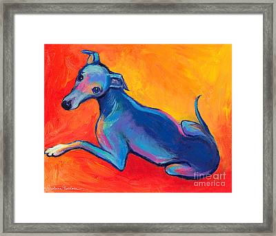 Colorful Greyhound Whippet Dog Painting Framed Print