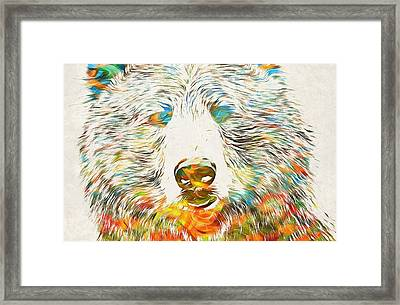 Colorful Grizzly Bear Framed Print by Dan Sproul