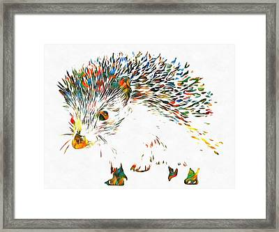 Colorful Hedgehog Framed Print by Dan Sproul