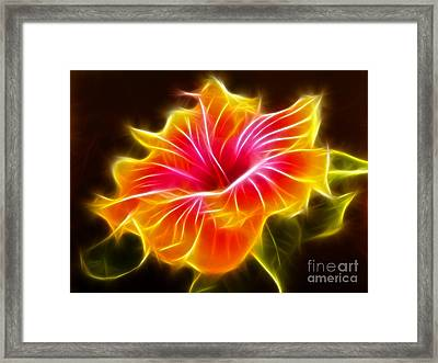Colorful Hibiscus Flower Framed Print by Pamela Johnson