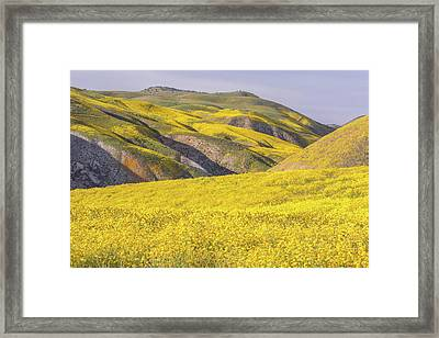 Framed Print featuring the photograph Colorful Hill And Golden Field by Marc Crumpler