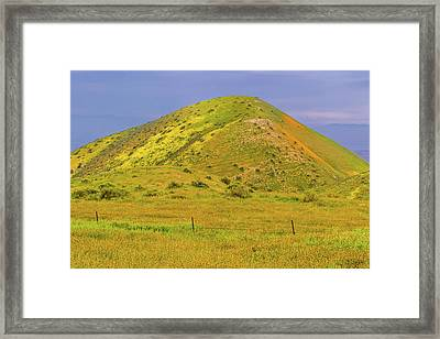 Framed Print featuring the photograph Colorful Hill by Marc Crumpler