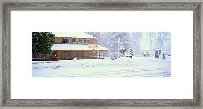 Colorful Hotel In Winter Snowstorm Framed Print