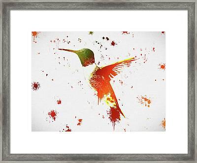 Colorful Hummingbird Paint Splatter Framed Print by Dan Sproul