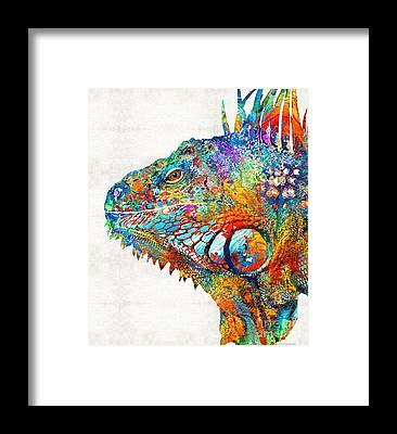 Green Iguana Framed Prints