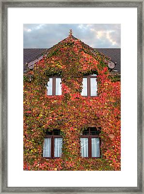 Colorful Ivy House Ireland Framed Print by Pierre Leclerc Photography
