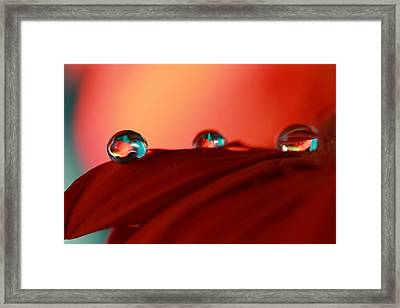 Colorful Macro Water Drops Framed Print