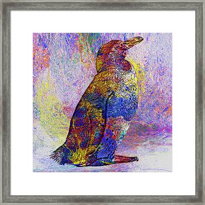 Colorful Penguin Framed Print by Jack Zulli