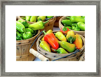 Colorful Peppers Framed Print by Teri Virbickis