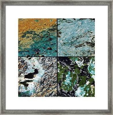 Colorful Pond Scum Framed Print by David Salter