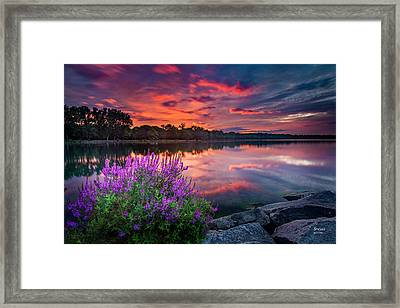 Colorful Presunrise Over Willow Bay Framed Print
