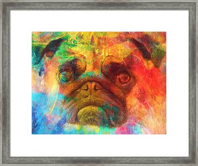Colorful Pug Framed Print by Dan Sproul