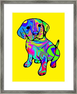 Colorful Puppy Framed Print by Chris Butler