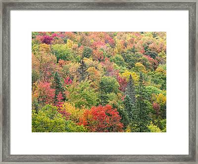 Colorful Puzzle Framed Print