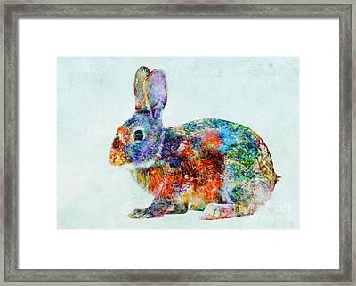 Colorful Rabbit Art Framed Print