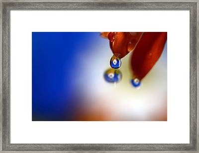 Colorful Reflective Water Drops Framed Print by Laura Mountainspring