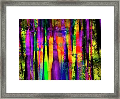 Colorful Silk Framed Print