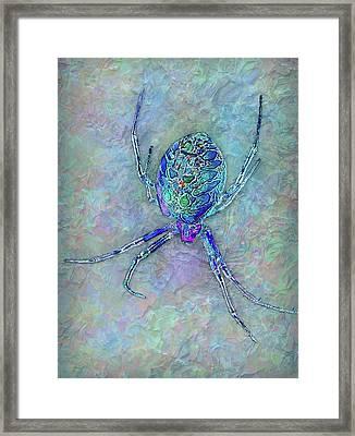 Colorful Spider Framed Print