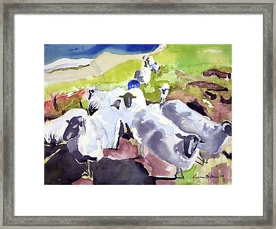 Colorful Waiting Sheep Framed Print