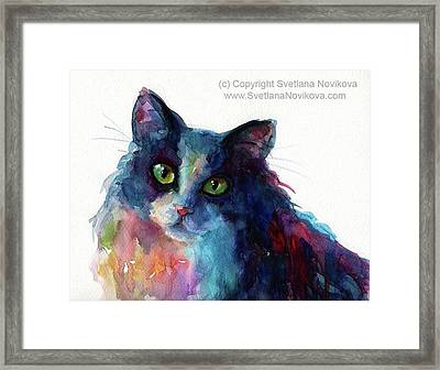 Colorful Watercolor Cat By Svetlana Framed Print