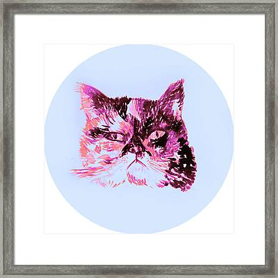 Colorful Watercolor Of Cat Framed Print by Oana Unciuleanu