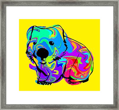 Colorful Wombat Framed Print by Chris Butler