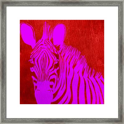 Colorful Zebra Art 4 - By  Diana Van Framed Print