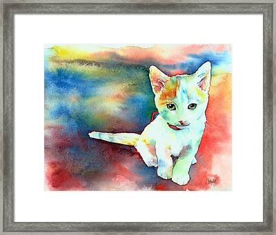 Colorfull Kitty Framed Print