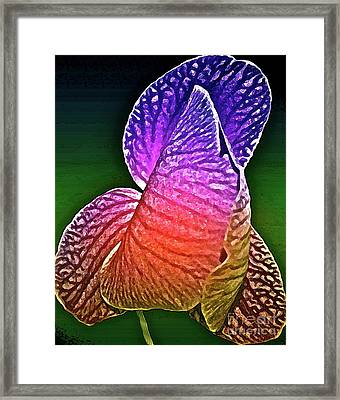 Coloring And Imagining Framed Print by Gwyn Newcombe