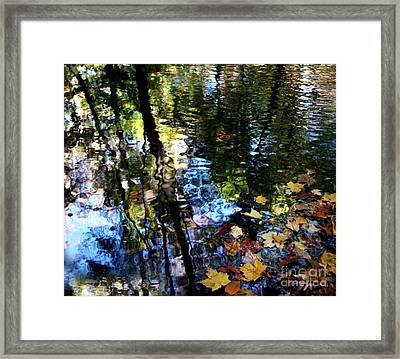 Colors Are Deeds And Sufferings Of Light Framed Print by Monika A Leon