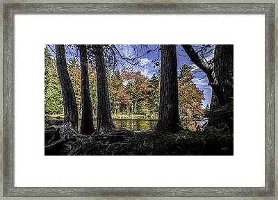 Colors Divided Framed Print by Everet Regal