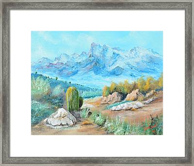 Colors In The High Desert Framed Print