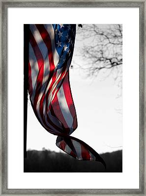 Colors In The Wind Framed Print by Lisa Johnston