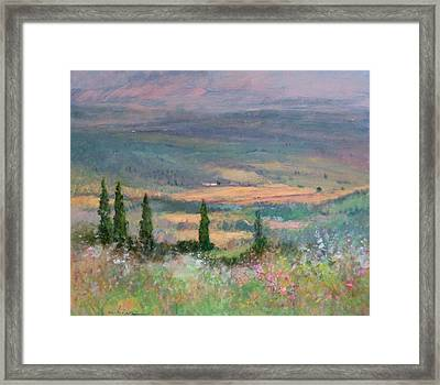 Colors In Tuscany Framed Print