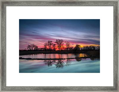 Colors  Framed Print by Jackie Novak