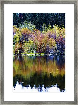 Colors Of Autumn In May Framed Print by Russell  Barton
