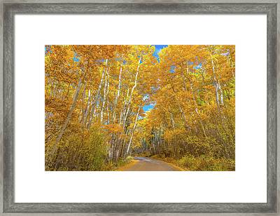 Framed Print featuring the photograph Colors Of Fall by Darren White
