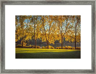 Colors Of Fall Framed Print by Mauricio Ricaldi