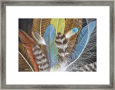 Colors Of Flight Framed Print