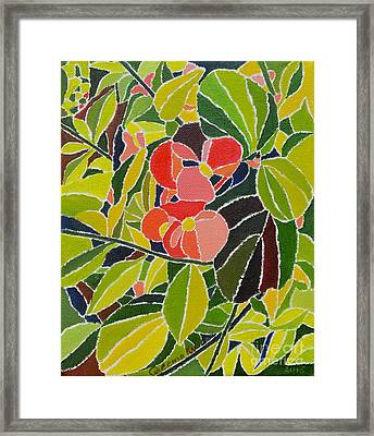 Colors Of Nature Framed Print by Seema Kumar