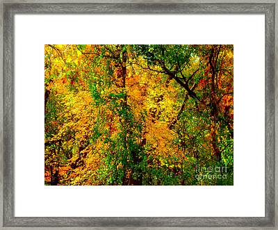 Colors Of New England Framed Print by Rick Maxwell