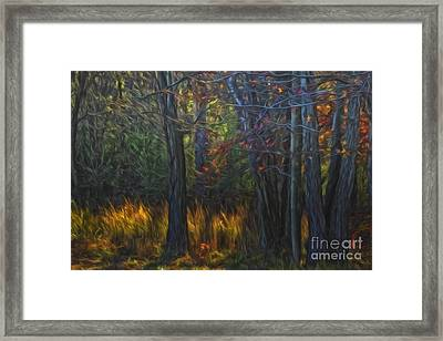 Colors Of November Framed Print