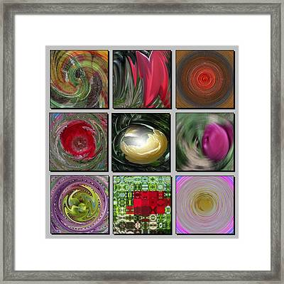 Colors Of Spring Framed Print by David and Lynn Keller