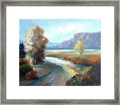 Colors Of The Desert Framed Print by Sally Seago