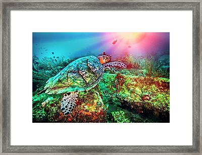 Colors Of The Sea In Lights Framed Print